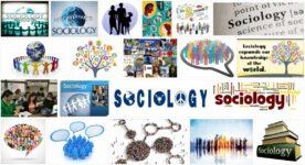 Sociology 3